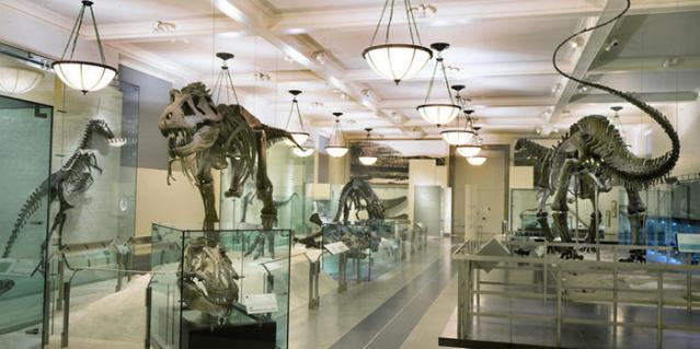 FLI Evidence hall-of-saurischian-dinosaurs