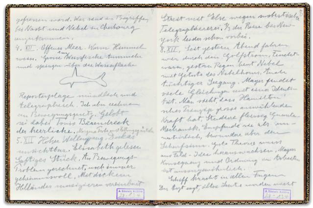 FLI Einstein diary