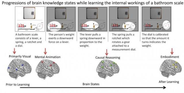 When you learn a new technical concept, something happens in your brain, but exactly what has been a mystery until now. For the first time, Carnegie Mellon University scientists have traced the brain processes that occur during the learning of technical concepts. Published in NeuroImage, the findings reveal how new technical knowledge is built up in the brain during the course of different learning stages. The findings foreshadow the capability to assess the effectiveness of instruction and efficiency of learning by monitoring changes in the brain. Credit: Carnegie Mellon University