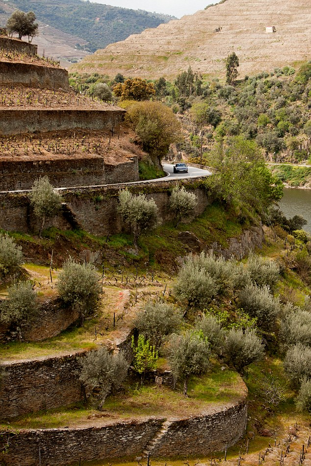FLI Driving Roads The N-222 road from Peso de Regua to Pinhao in Portugal has been awarded Best Road in the World