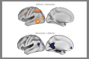 Top images show brain activity as participant pretends to see a familiar face for the first time; bottom images show brain activity when the participant is pretending to recognize a novel face. Both instances fooled the memory decoding algorithm into thinking the subject was telling the truth. Courtesy: Stanford Memory Laboratory