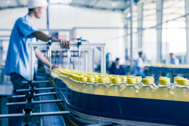FLI Food Economy