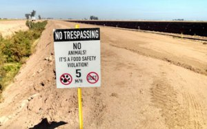This sign, located in the Imperial Valley, suggests that animals are considered a threat to food safety. (Photo by Patrick Baur)
