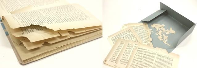 FLI books