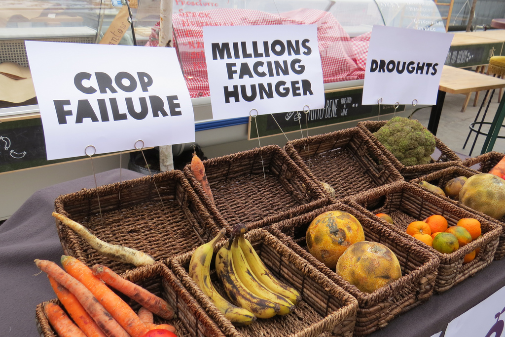 Study Lays Out Effects Of Climate Change On Food Production And Health –  The Future Leadership Institute