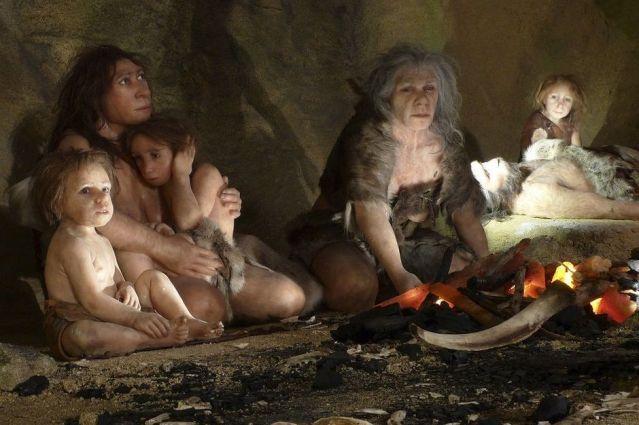 FLI Neanderthales
