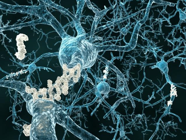 fli-ku-leuven-neuron