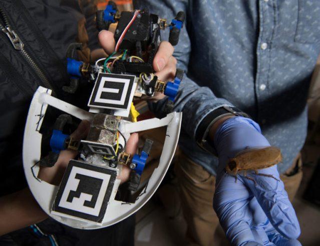 57-robotbug-closeup-768x591